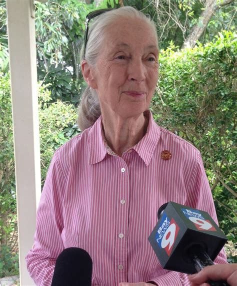 Jane Goodall: Young People Can Make Difference | WUSF News