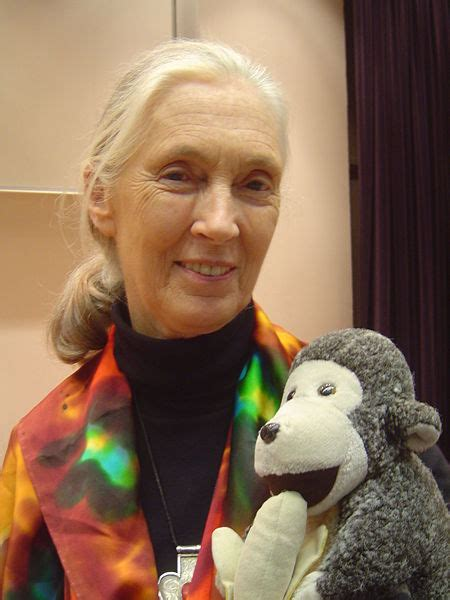 Jane Goodall - Pictures, Photos & Images of Scientists